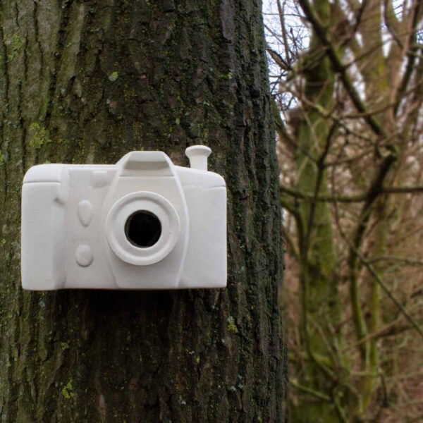 Hang de 'fotocamera' bijvoorbeeld aan een boom. Kleine vogeltjes, zoals de meeste meesjes, kunnen door de lens naar binnen en buiten.
