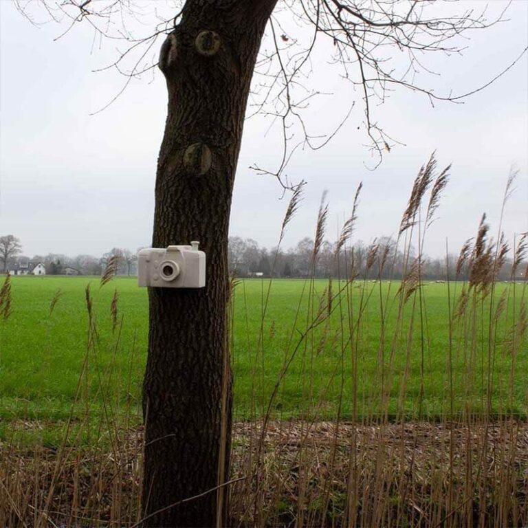Hangend aan een boom is dit vogelhuisje in de vorm van een fotocamera is bijzonder object om te zien. De vogels zullen er dankbaar gebruik van maken.