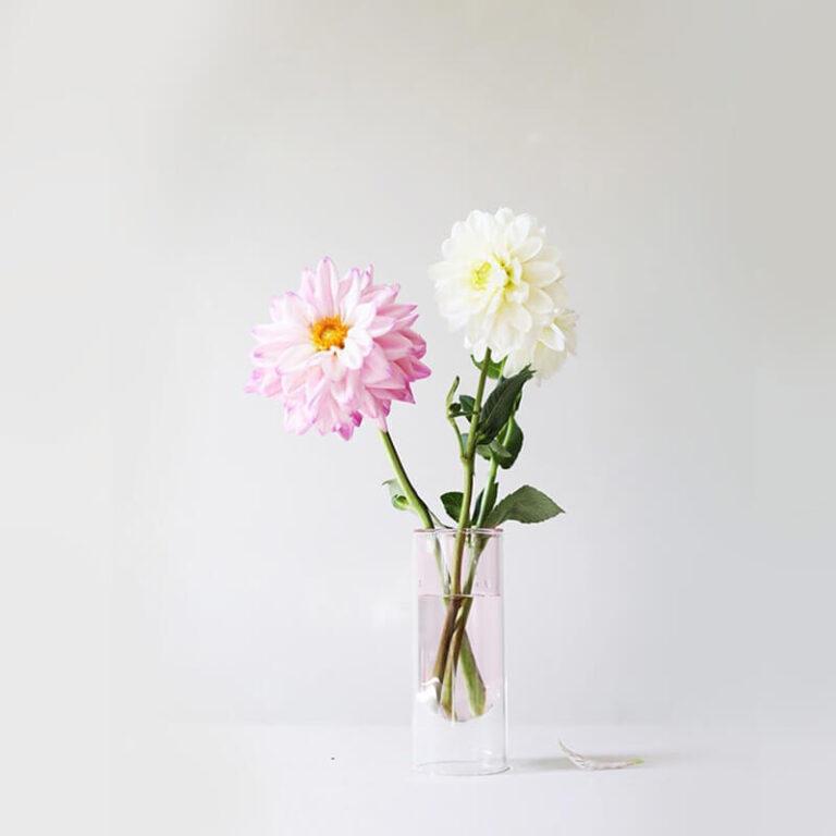 Ook Dahlia's staan prachtig in de moderne Flower Tube vazen. Samen vormen ze een prachtig ensemble.