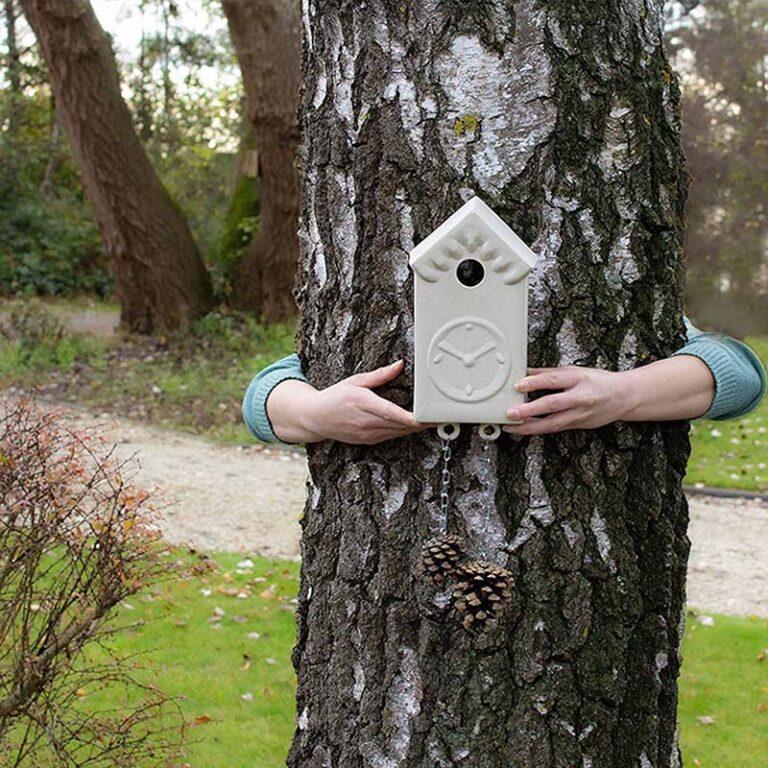 Het Vroege Vogel vogelhuisje heeft een originele vormgeving als wandklok met dennenappels als gewichten.