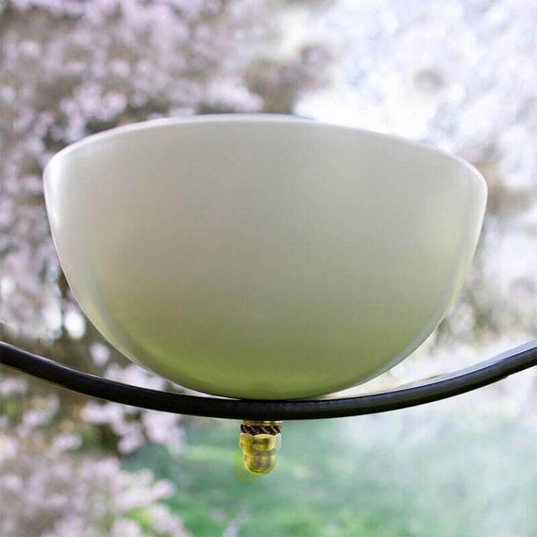 Design vogelvoederschaal Milla kun je afwisselend gebruiken voor vogelvoer of water. Vogels kunnen er dus eten of drinken en baden.