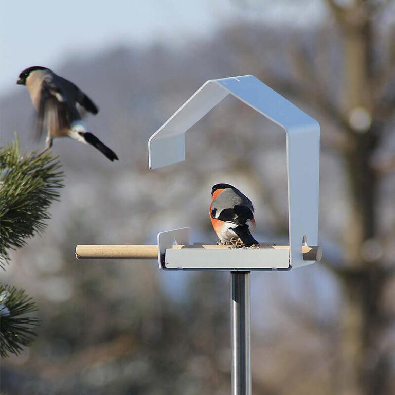 Op de tak of het stokje van het Petit vogelhuisje, dat overigens niet inbegrepen is, kunnen vogels aanvliegen of uitrusten.