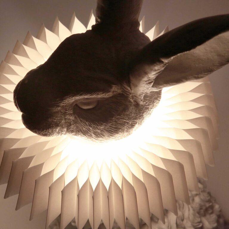 Het licht stroomt prachtig door de fijne plooitjes van de 'Gouden Eeuw kraag' die om de hals van het konijn zit.