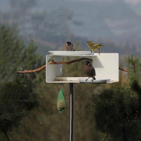 Het moderne Bauhaus vogelhuis met 2 schaaltjes staat prachtig in elke tuin en heeft een grote aantrekkingskracht op vogels.